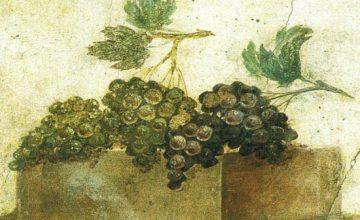 I vini dell'antica Grecia